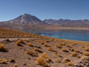 Laguna Altiplanica, Atacama desert
