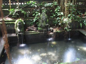 Fountain at the Monkey Forest